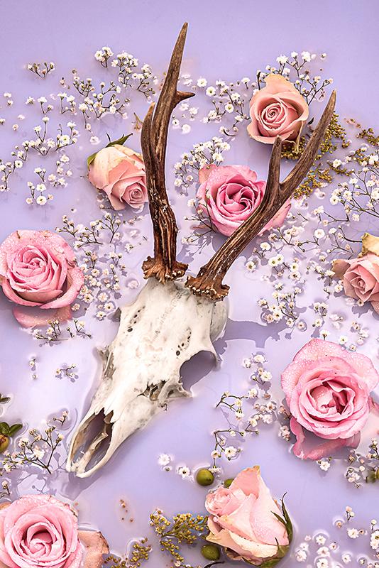 werk aan de muur reebok hert stilleven bloemen